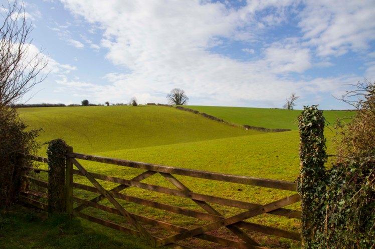 Cockington Valley_001.jpg