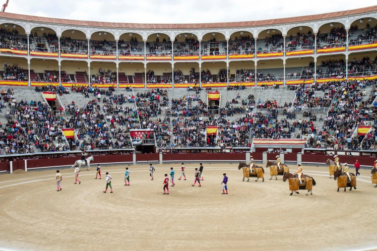 Bullfighting_013