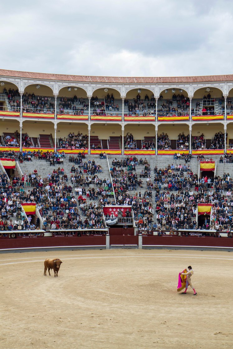 Bullfighting_022