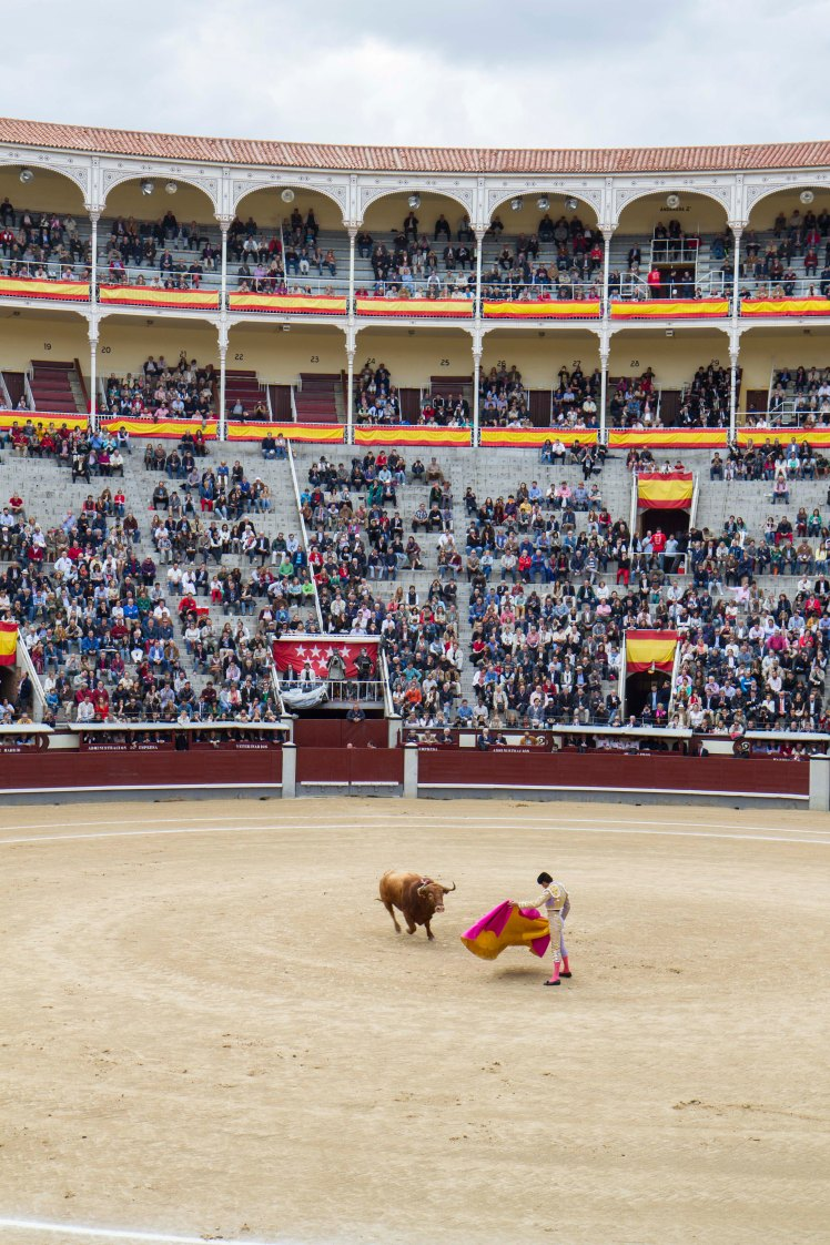 Bullfighting_023