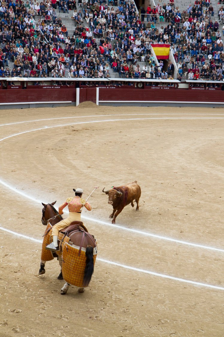 Bullfighting_027