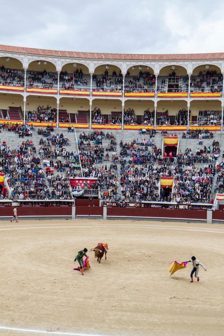 Bullfighting_030