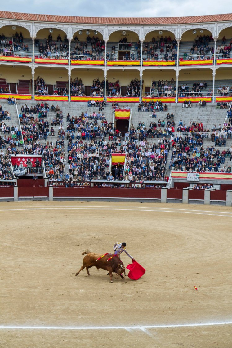 Bullfighting_033